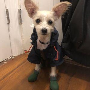 WAGWEAR Navy XS Dog Raincoat Jacket Coat